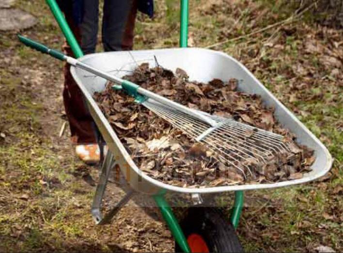 Sipariş Kıştan sonra bahçe temizlik hizmetleri