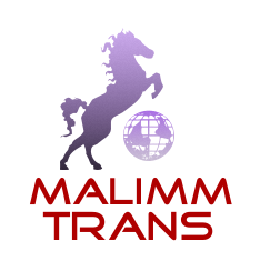 Sipariş Uluslararası Taşımacılık
