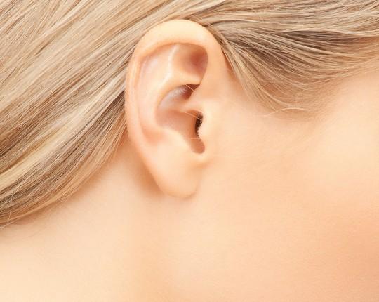 Sipariş Ear Correction Surgery