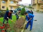 Sipariş Bahçe bakım hizmetleri