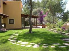 Villaların etrafının düzenlenmesi