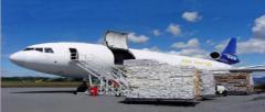 Ernak lojistik hava yolu yük taşıma nakliye