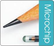 Mikroçip uygulamaları