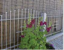 Cam, balkon, merdiven, ev bahçeleri için ferforje