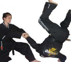 Spor Dallarından Biri Olan Hapkido Hizmetleri