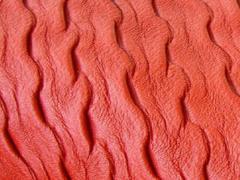 Güncel Renk ve Güncel Model Kumaşlar