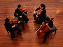 Klasik ve çigan müziği gurupları