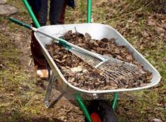 Kıştan sonra bahçe temizlik hizmetleri
