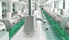 Turnkey Flour Mill System & Process