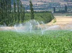 Yağmurlama sulama sistemleri