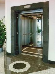 Şahıs asansör modelleri