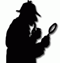 Services of private detectives