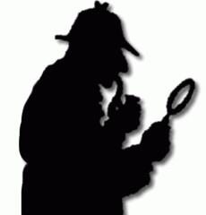 Özel dedektif hizmetleri