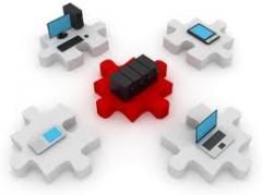 Network ağı kurulumu