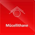 Basım Sonrası Mücellithane Hizmeti
