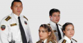 C) Geçici Güvenlik Hizmeti, fuar,toplantı,konser ve spor karşılaşmaları