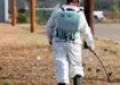 Haşere İlaçlama: Böcek İlaçlama