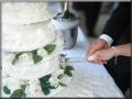 Düğün hizmetleri
